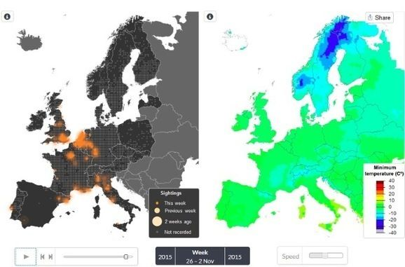 Pin By Hubert Messmer On Biodiversite Carte Interactive Oiseaux