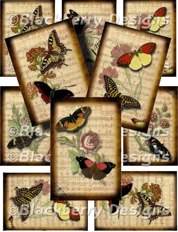Idea Frame Butterfly On Old Sheet Music And Or Use