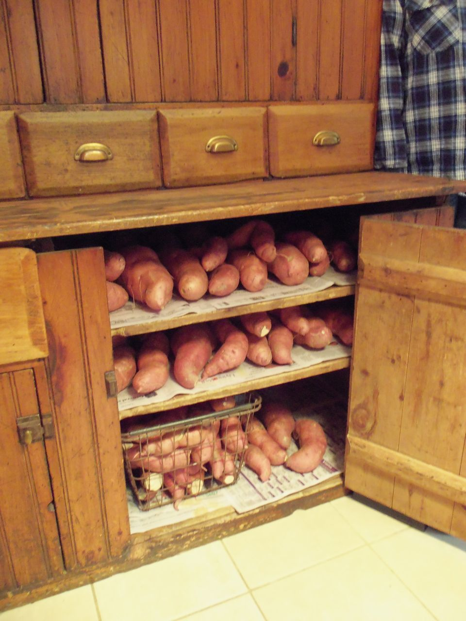 The Deliberate Agrarian: Growing Sweet Potatoes in My Northern Garden