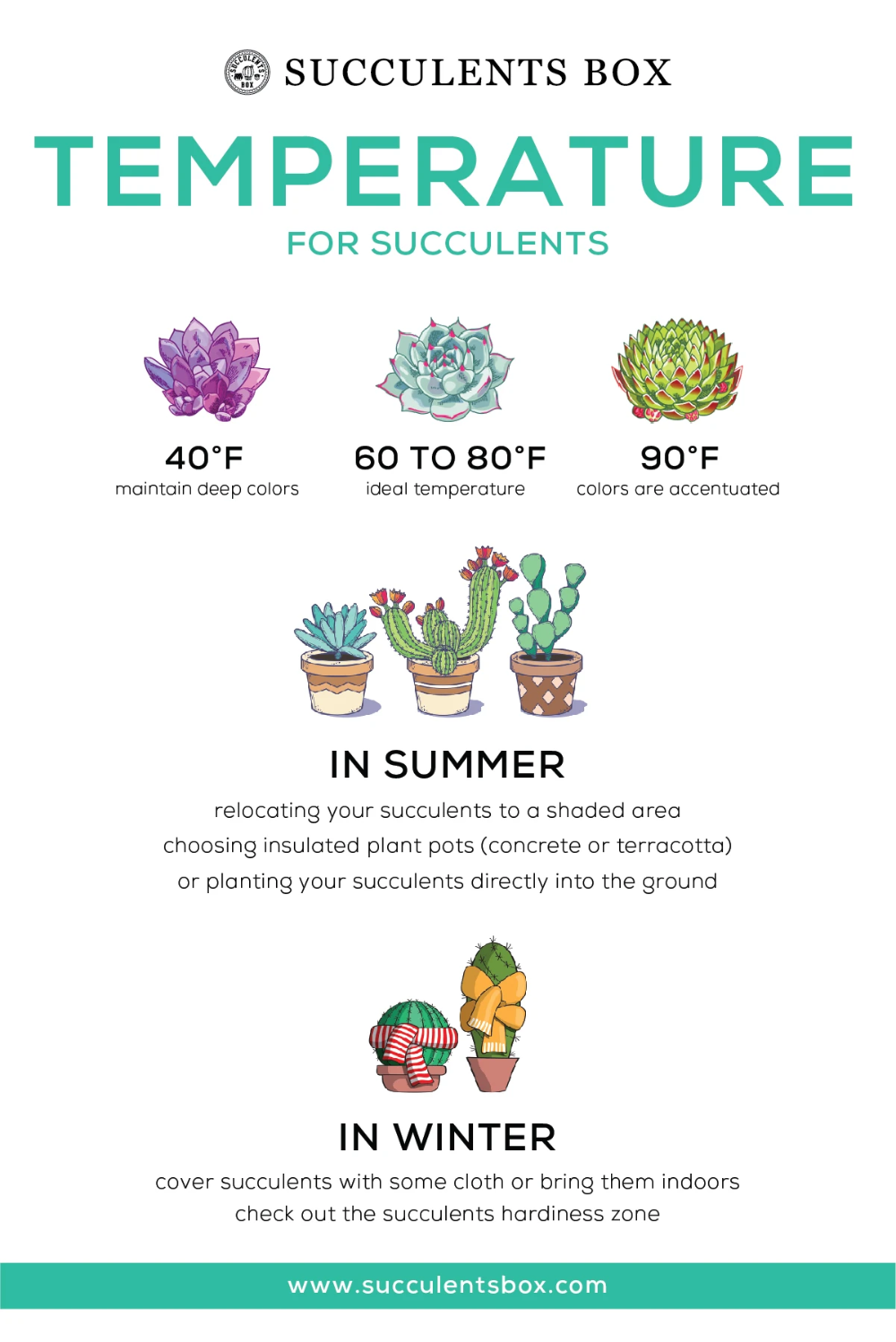 Photo of Infographic: Temperature for Succulents