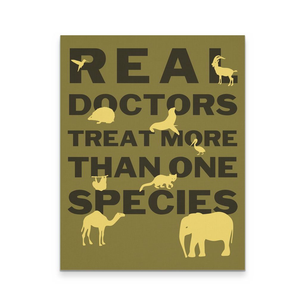 "Canvas 11"" x 14"" Real Doctors Treat more than one species Veterinary Wall Art"