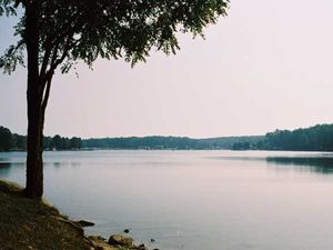 Big Bear Lake Campland In Bruceton Mills West Virginia Find Any Bruceton Mills West Virginia Rv Resort Updated 03 12 1 Big Bear Lake West Virginia Big Bear