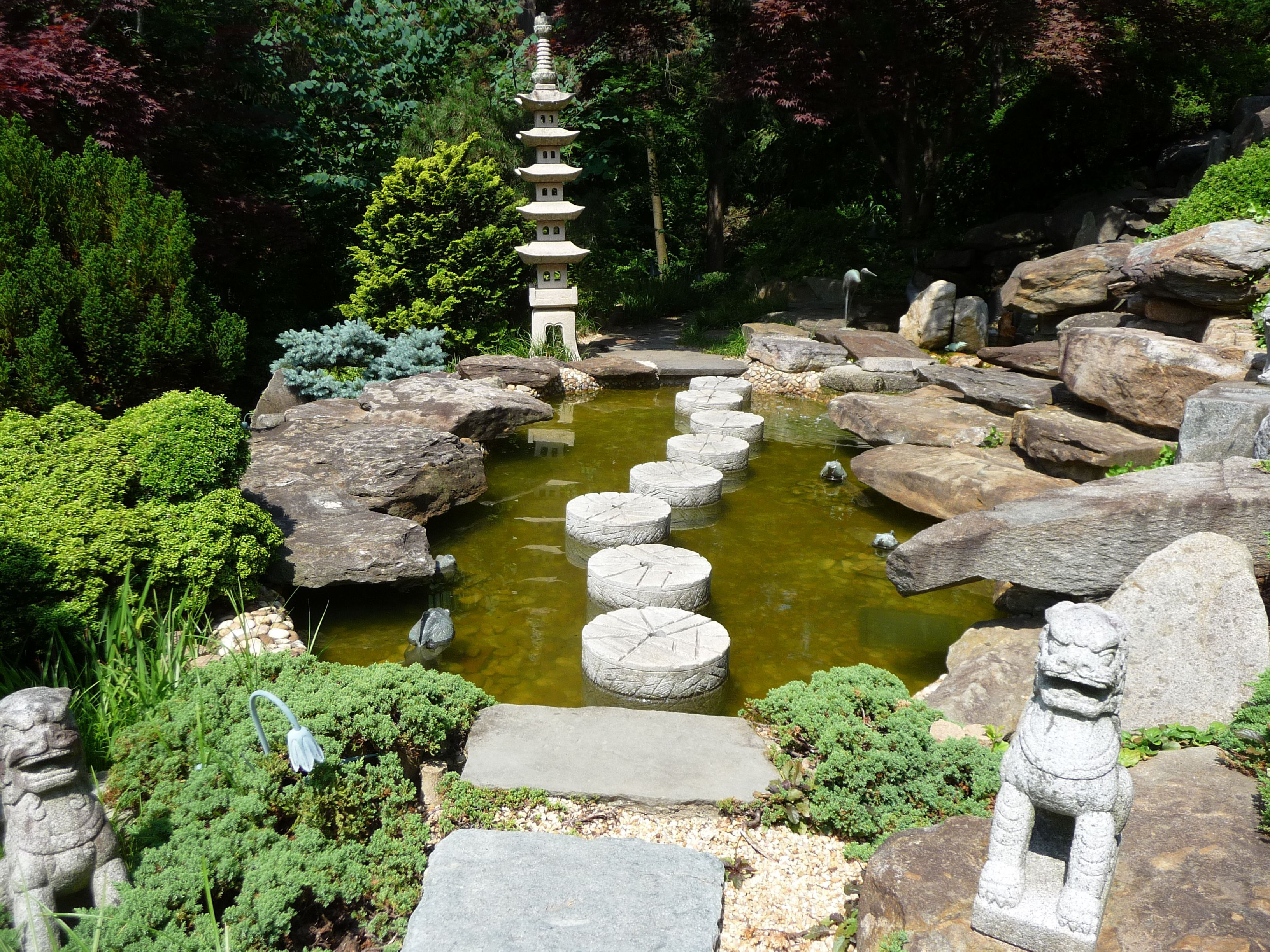 japanese style garden at the hillwood estate and gardens