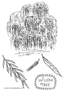 Tree Colouring Pages Tree Coloring Page Coloring Pages Flower