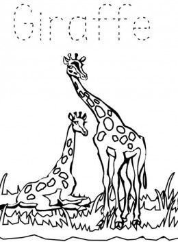 Zoo Animals Kids Coloring Pages With Free Colouring Pictures To Print Free Coloring Pictures Coloring Pages For Kids Coloring Pictures