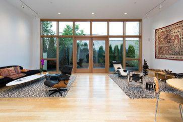 Somerville Contemporary contemporary-living-room