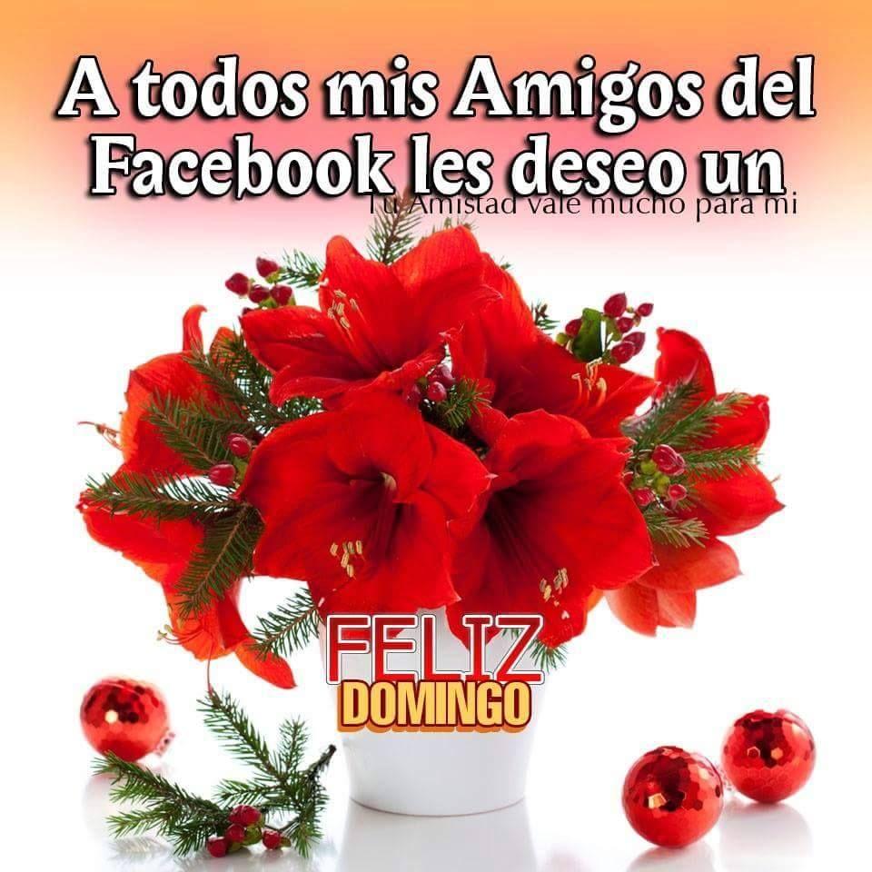 Feliz domingo facebook