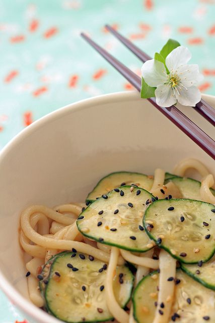 Udon noodles japanese style