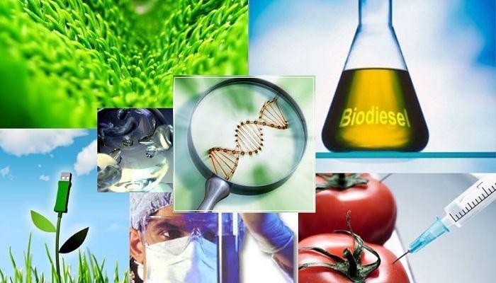 4 Aplicaciones De La Biotecnologia Alimentaria Biotecnologia Alimentaria Biotecnologia Caracteristicas De La Ciencia