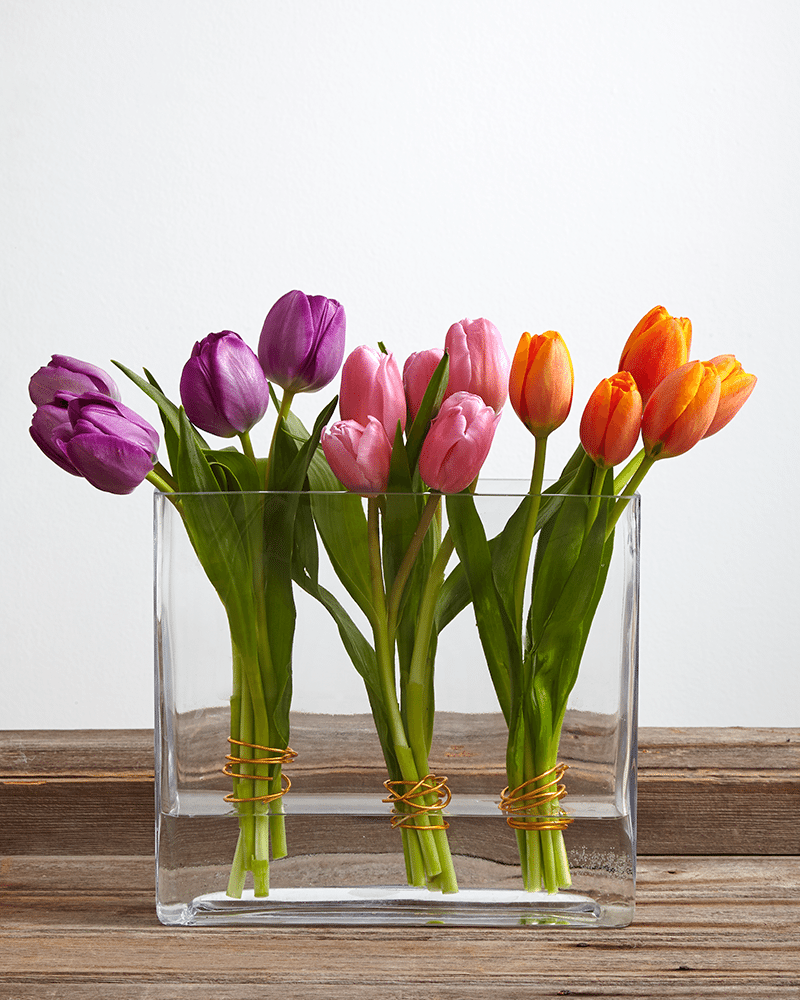 History And Meaning Of Tulips Proflowers Blog Fresh Flowers Arrangements Tulips Arrangement Tulip Decor