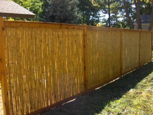 Cedar Bamboo Fence Bamboo Fence Backyard Outdoor Fencing