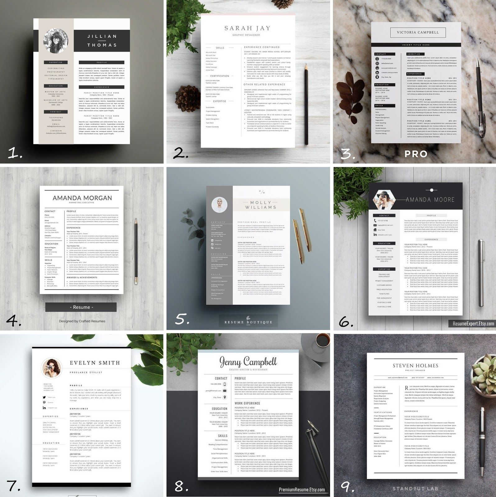 Professional Cv Templates To Make You Stand Out Kristjaana