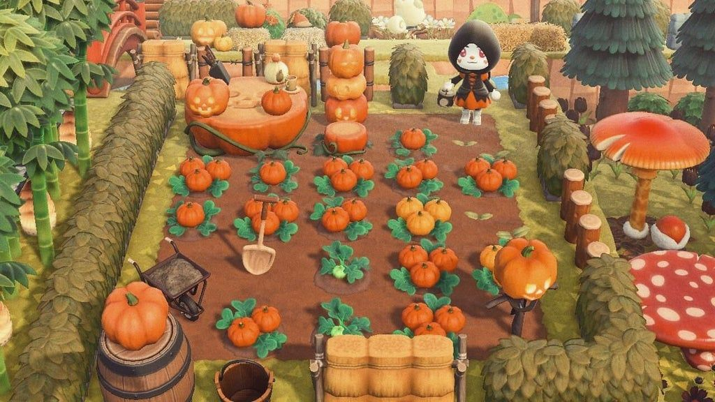 One More Pumpkin Patch For This Farming Subreddit Animalcrossing In 2020 New Animal Crossing Animal Crossing Pc Animal Crossing