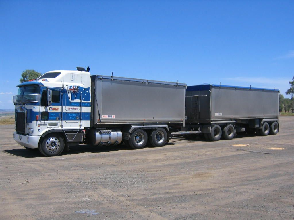 An Australian Truck And Quad Dog Typically Up To 19