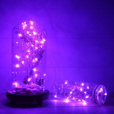 The Holiday Aisle® 20 Light LED Battery String Light Color: Purple