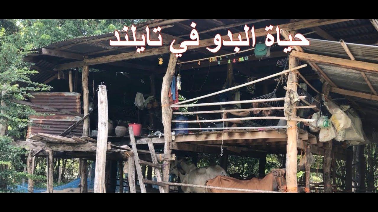 ضمن رحلات الريف بين البدو في تايلند Neon Signs Life Thailand