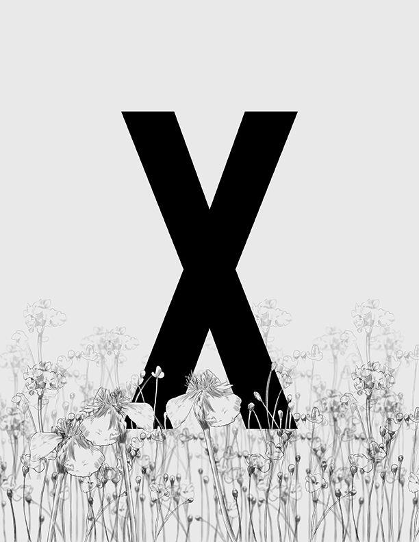 Alphabet Series by Thea Bathan