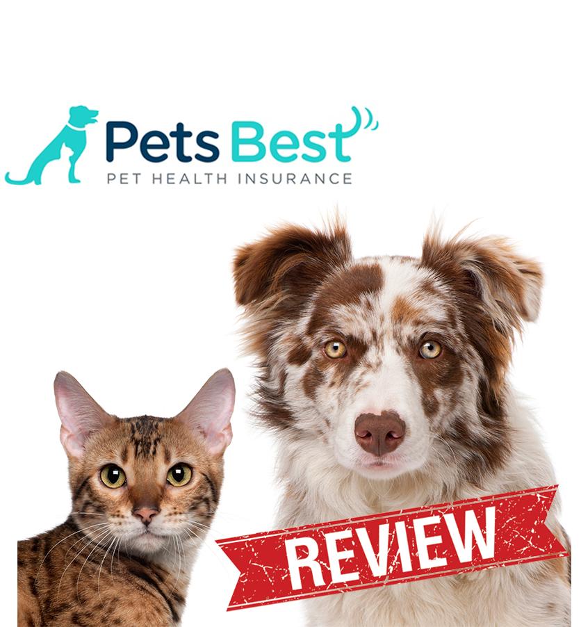 Pet Insurance Reviews Pet insurance reviews, Pet