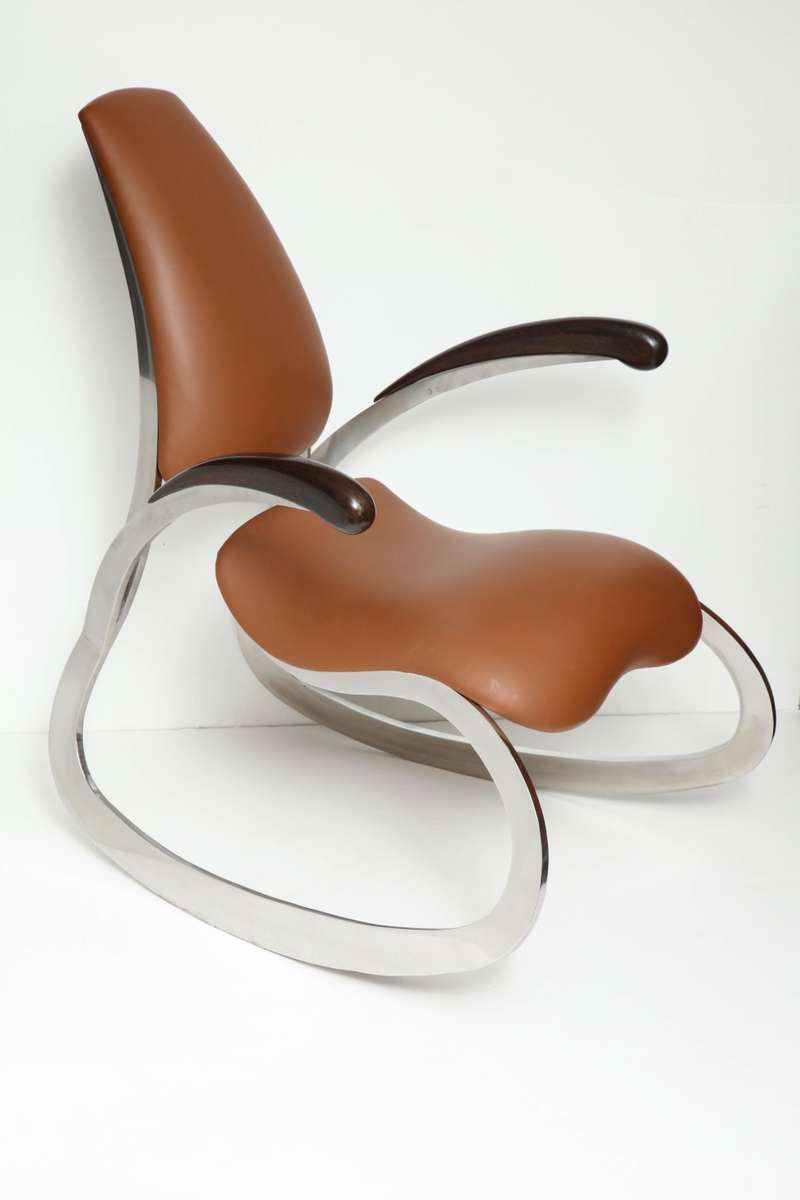 Cool Organic Body Rocking Chair With Dynamic Curving Steel Frames Forskolin Free Trial Chair Design Images Forskolin Free Trialorg