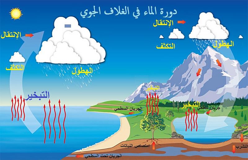 دورة الماء Microsoft In Education Water Cycle Cycle Pictures Water Cycle For Kids