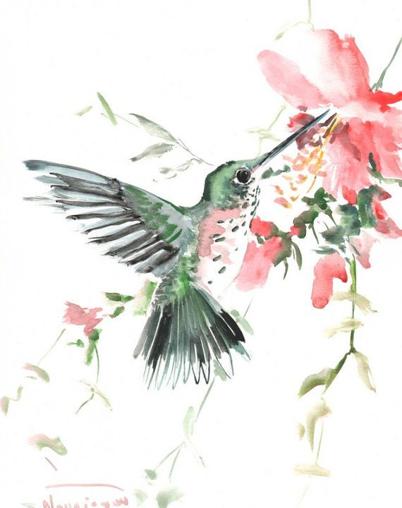 Hummingbird with red flowers Original watercolor by ...
