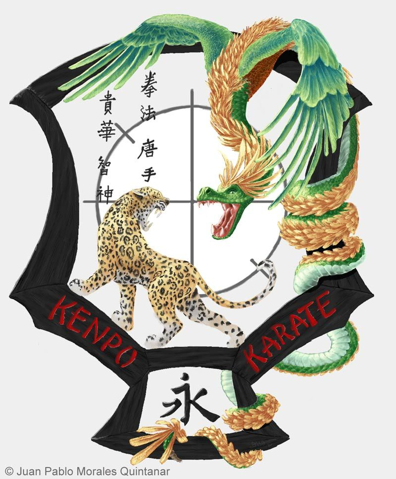 Love This Variation Of The Kenpo Patch Martial Arts Pinterest