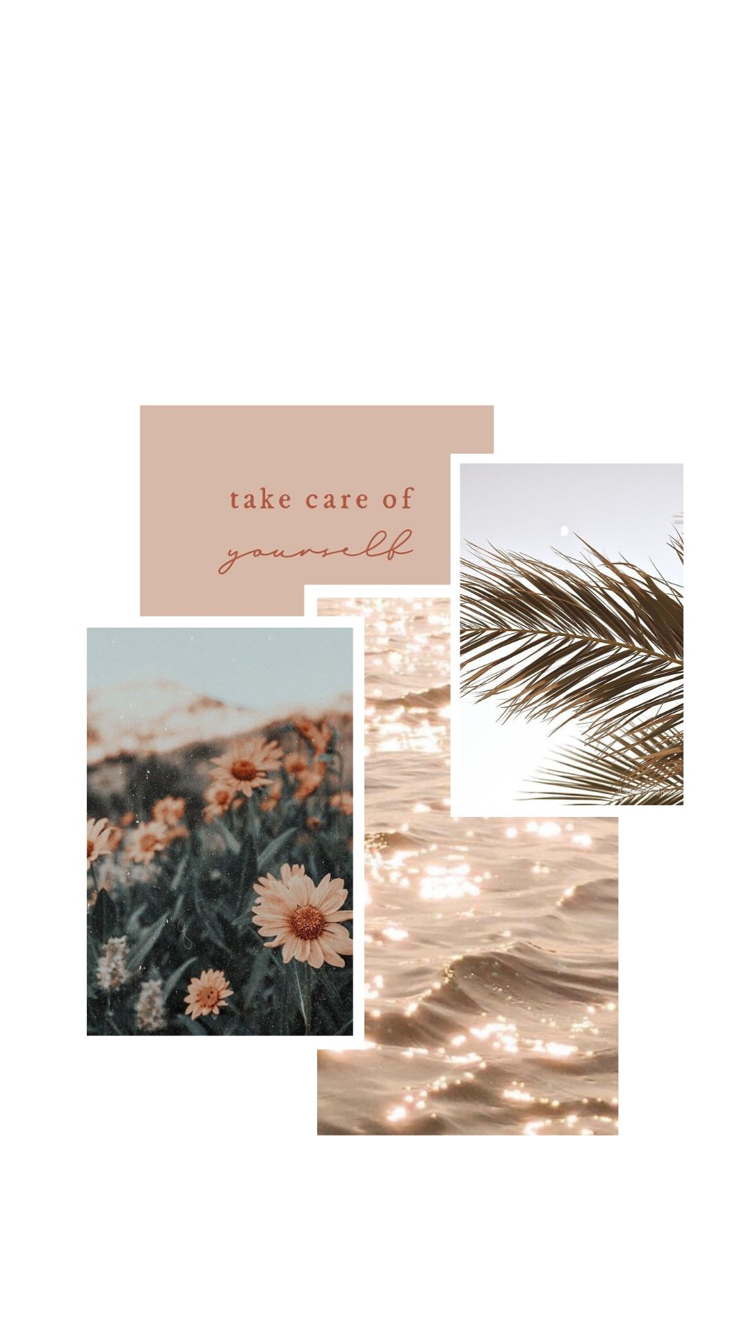 Aesthetic Minimalistic Collage Wallpaper In 2020 Iphone Wallpaper Tumblr Aesthetic Pastel Iphone Wallpaper Flower Iphone Wallpaper