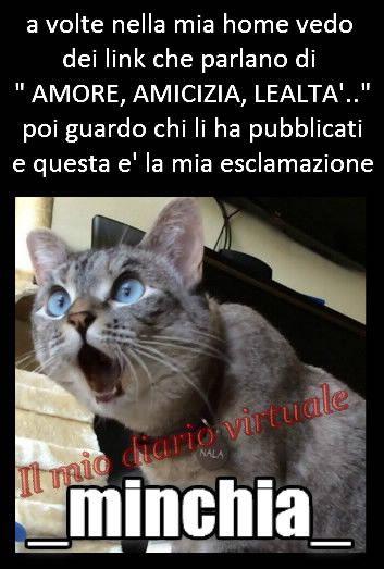 https://www.facebook.com/Il-mio-diario-virtuale-Vivi-e-lascia-vivere-464821046873701/?fref=nf