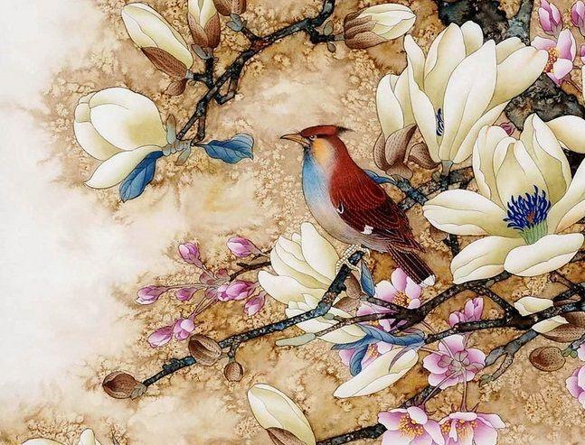Раскраска Птица на ветке цветущей магнолии | Цветочные ...