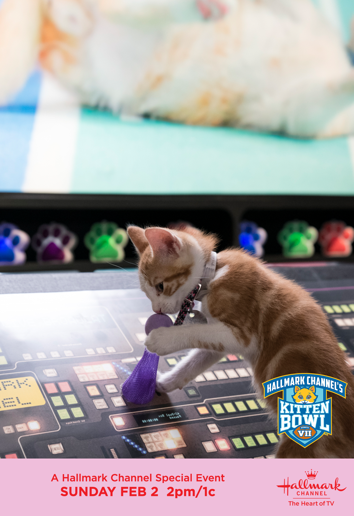 It S Chaos In The Control Room As The Action Heats Up On The Field In Catbowl2 Join Us February 1 At 11pm 10c On Hall In 2020 Cat Bowls Hallmark Channel Kitten Bowls