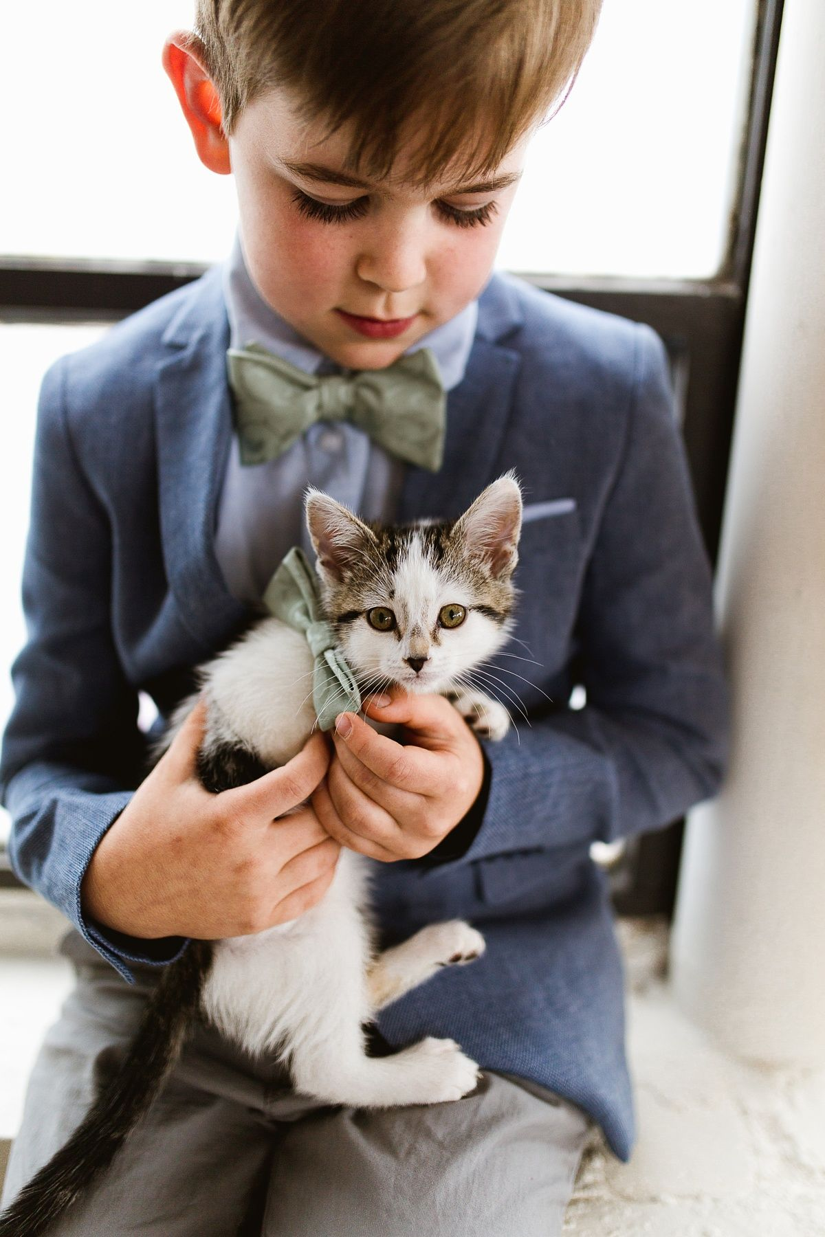 You Have to See This Wedding, Right MEOW! (With images