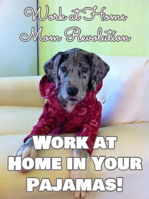 Work At Home In Your Pajamas Work At Home Mom Revolution Dog