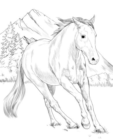 Pin Auf Pferde Kostenlos Ausmalbilder