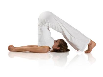 halasanaplow pose  yoga poses for beginners fun