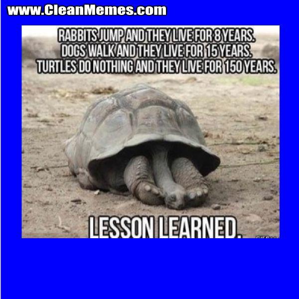 Cleanmemes Cleanfunnyimages Www Cleanmemes Com Sjove Memes Sjov Sjove Billeder