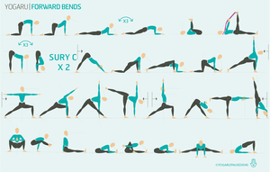 forward bends — yogaru  yoga sequences different types
