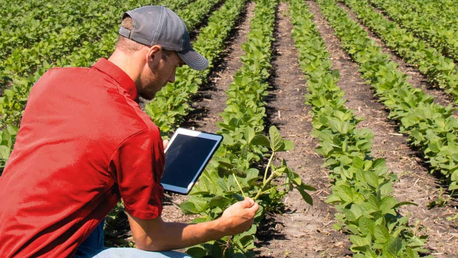 Agricultural professionals are needed today more than ever