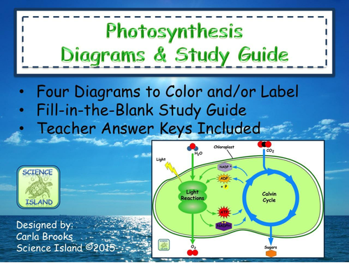 Pin by jenni cremer on classroom pinterest tes resources tes provides a range of primary and secondary school teaching resources including lesson plans worksheets and student activities for all curriculum ccuart Images