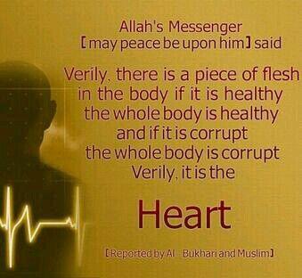 It is the heart