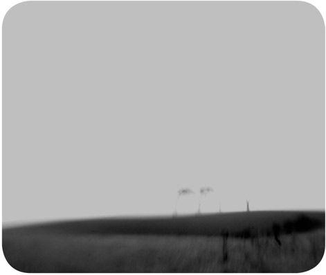 field horizon
