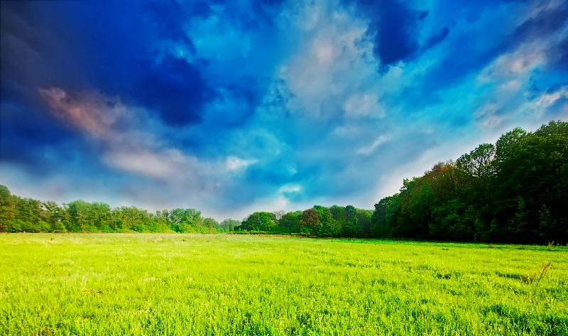 Unduh 700 Koleksi Background Alam Padang Rumput Gratis Terbaru