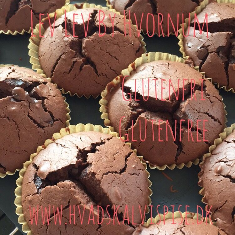 Chokolade muffins med chokolade stykker – glutenfri.