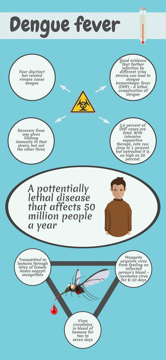 Infographic Dengue Fever Outlining Your Essay Infographic Dengue  Infographic Dengue Fever Outlining Your Essay Infographic Dengue Essay English Composition Essay also Thesis For An Analysis Essay  Essays About Science