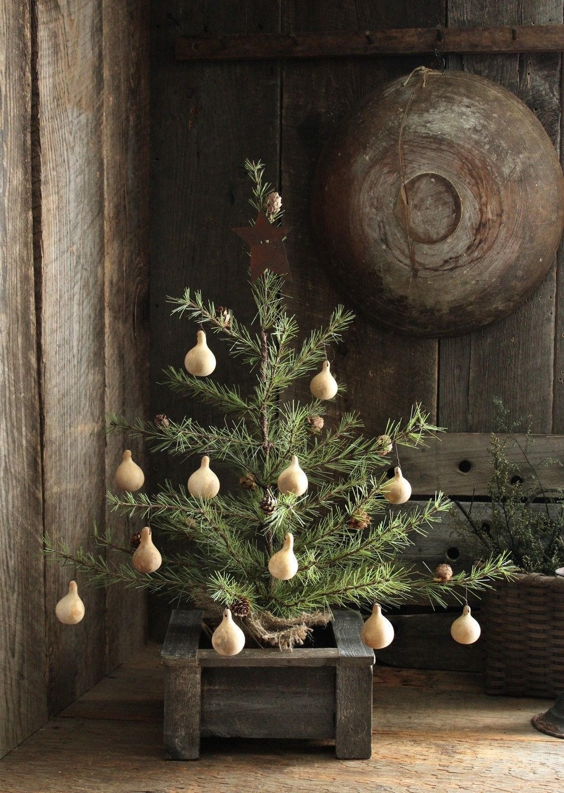 Decorated With Pine Cones And 12 Dried Spinner Gourd Ornies With A Quaint Primitive S Pine Cone Decorations Little Christmas Trees Christmas Table Decorations