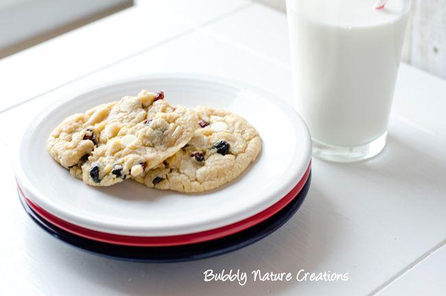 Red White And Blueberry Cookies Recipe Otis Spunkmeyer Copycat