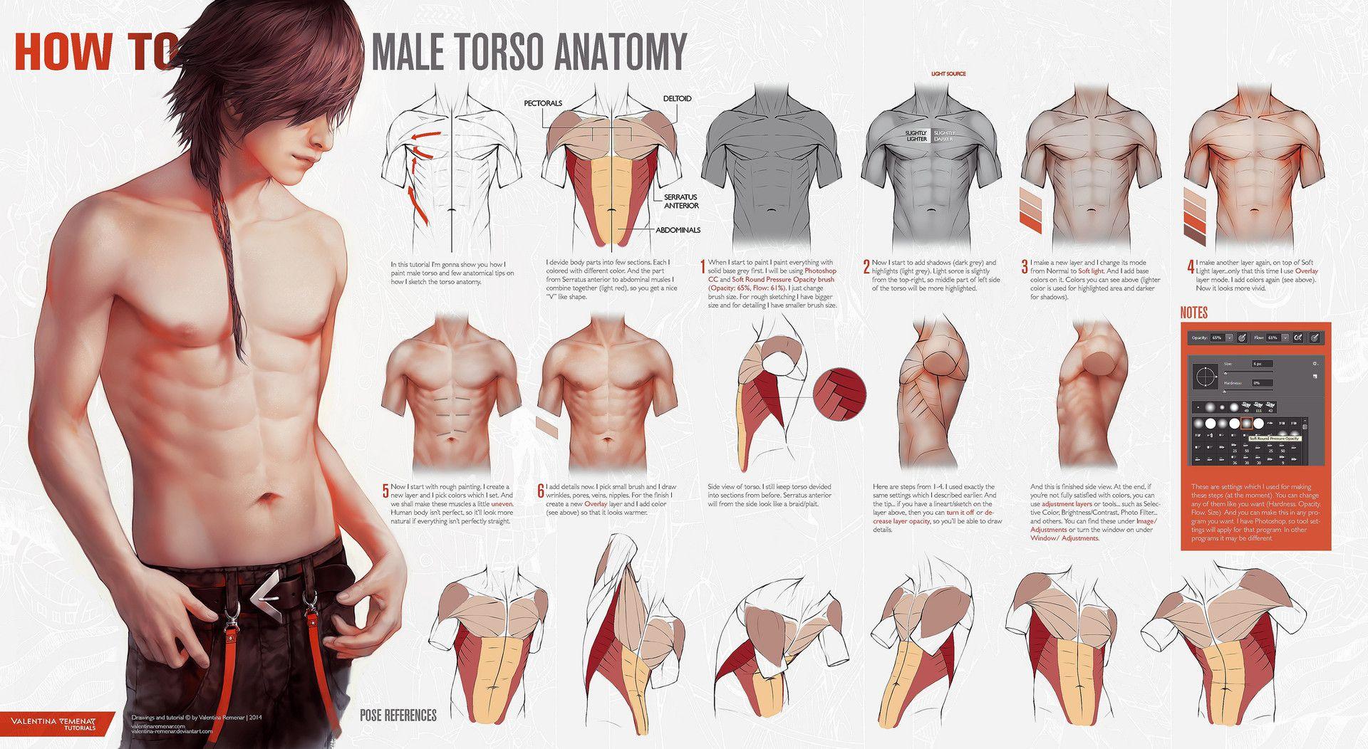 Progress tutorials on how I paint male torso (manga realism style ...