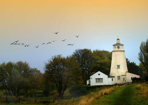 Geese over Peter Scott's Lighthouse LONG SUTTON, ENGLAND
