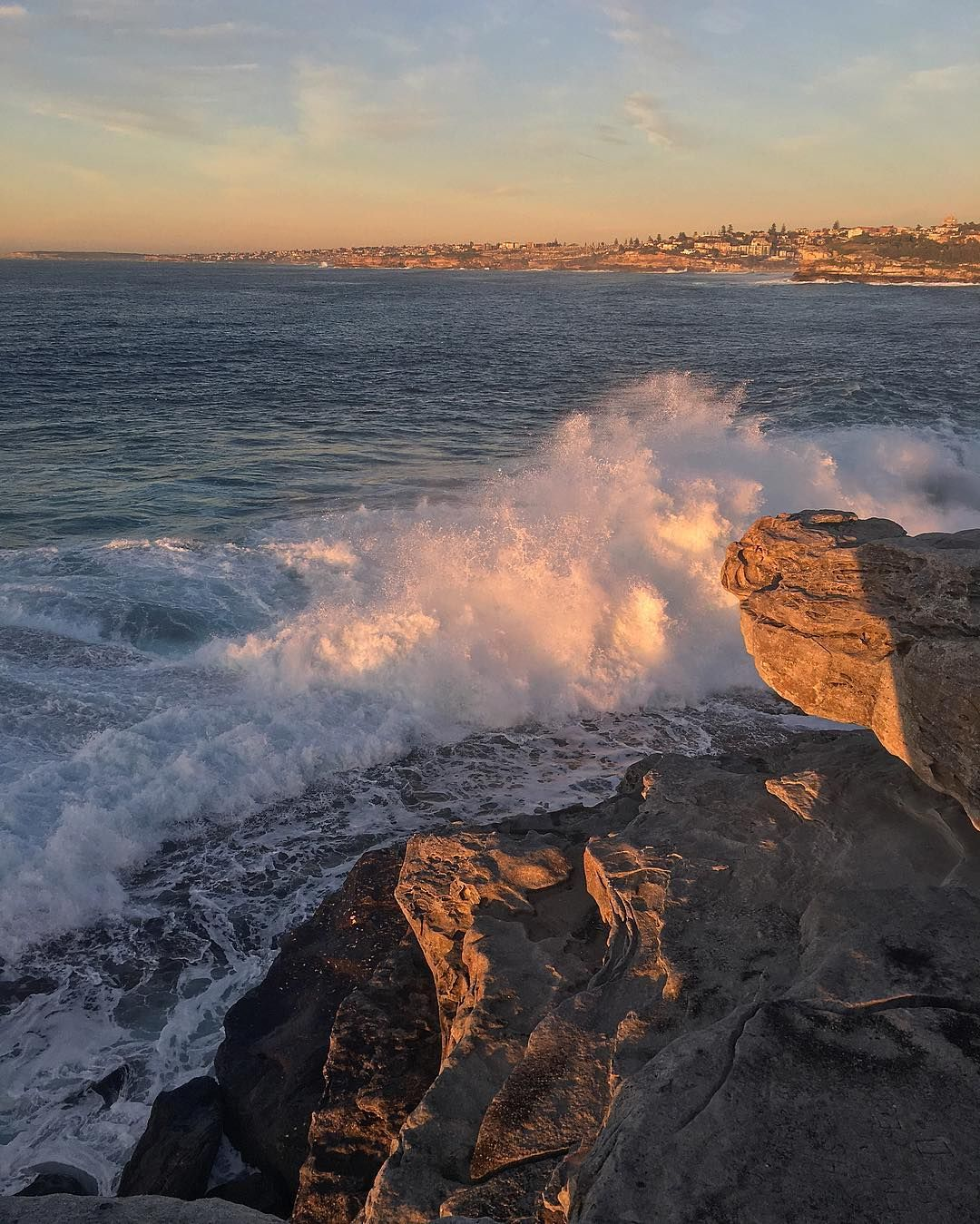 (Loc) Posted on May 25 2016 at 11:09AM: Bondi sunrise  by concious_living