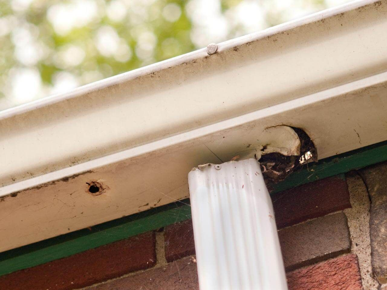 These Questions Can Determine If Your Gutters Are Really Safe Gutters How To Install Gutters Downspout