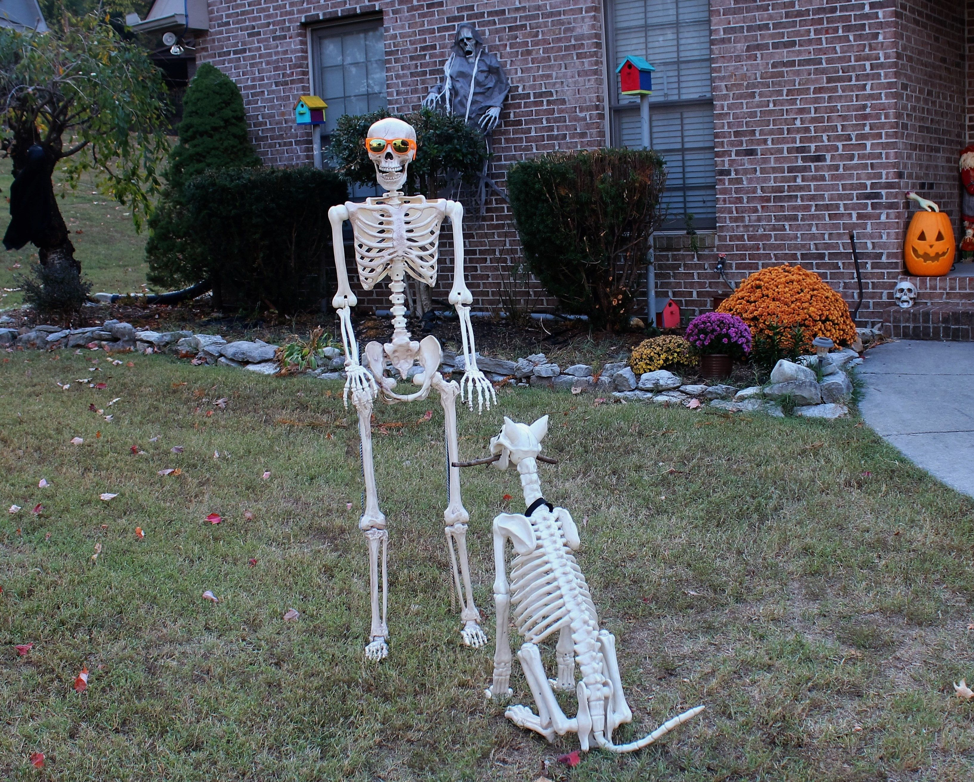 Good dog halloween witch decorations halloween